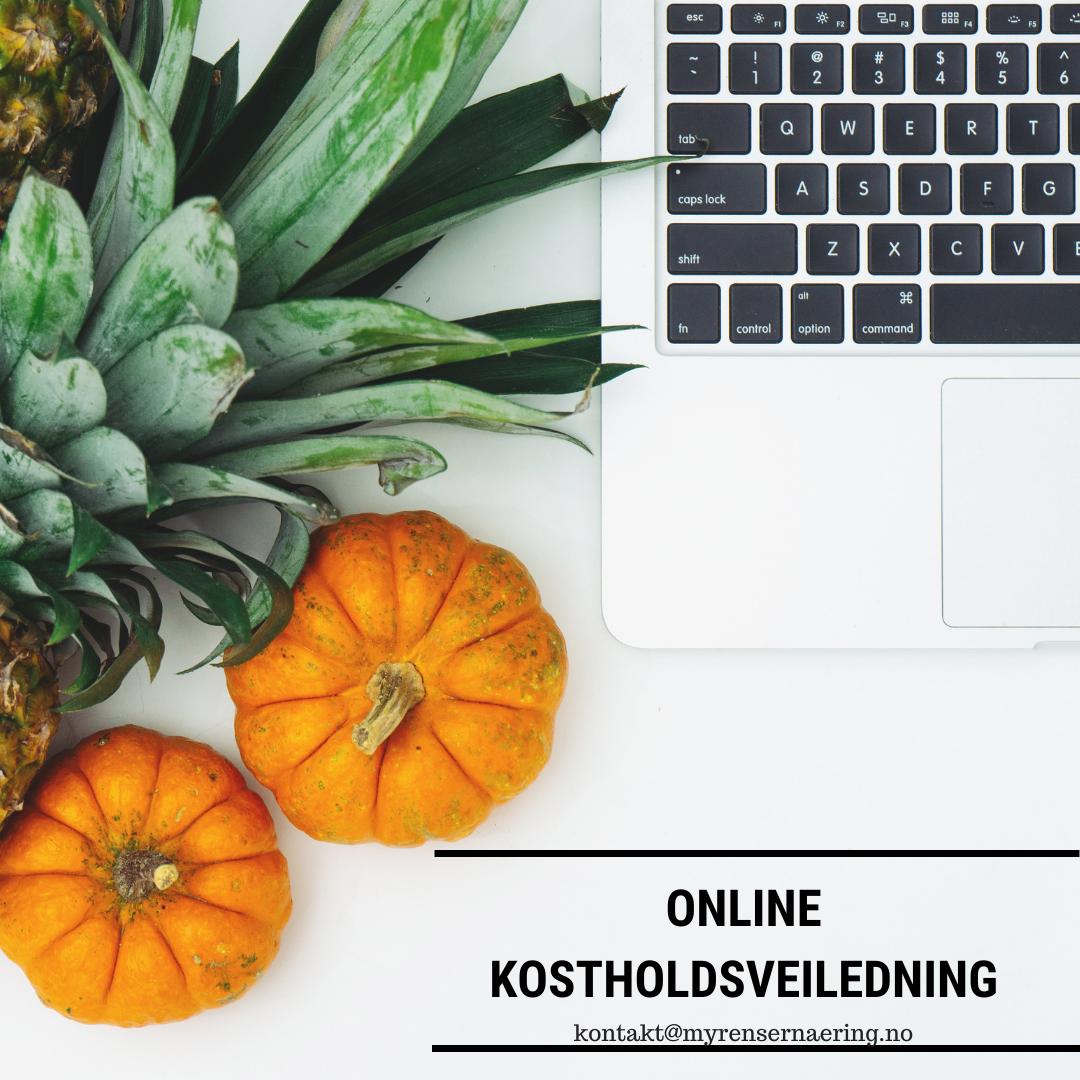Online kostholdsveiledning